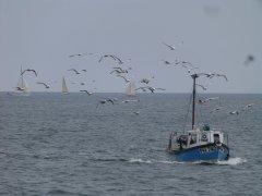 Falmouth - 28/05/2014 by John Harding